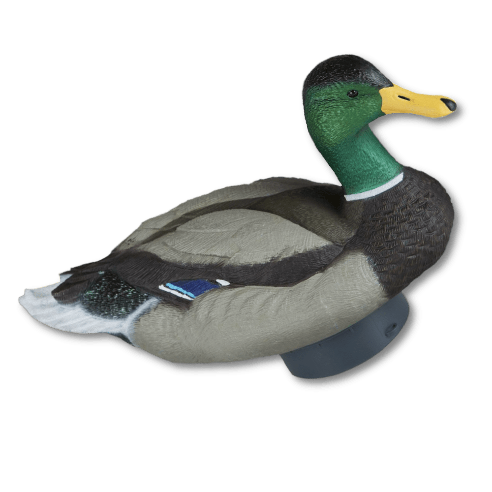 Image of the Lucky Duck Quiver Duck HD