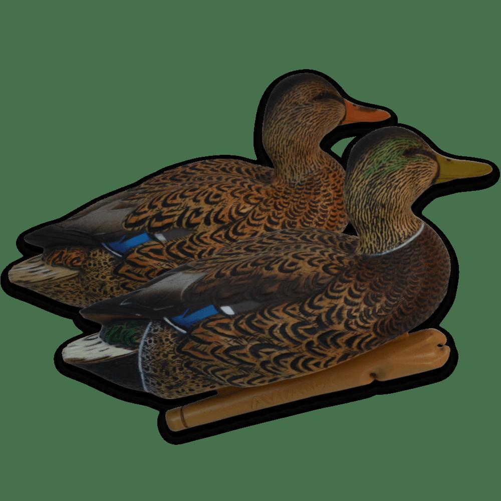 Image of the Early Season Avian-X Mallards