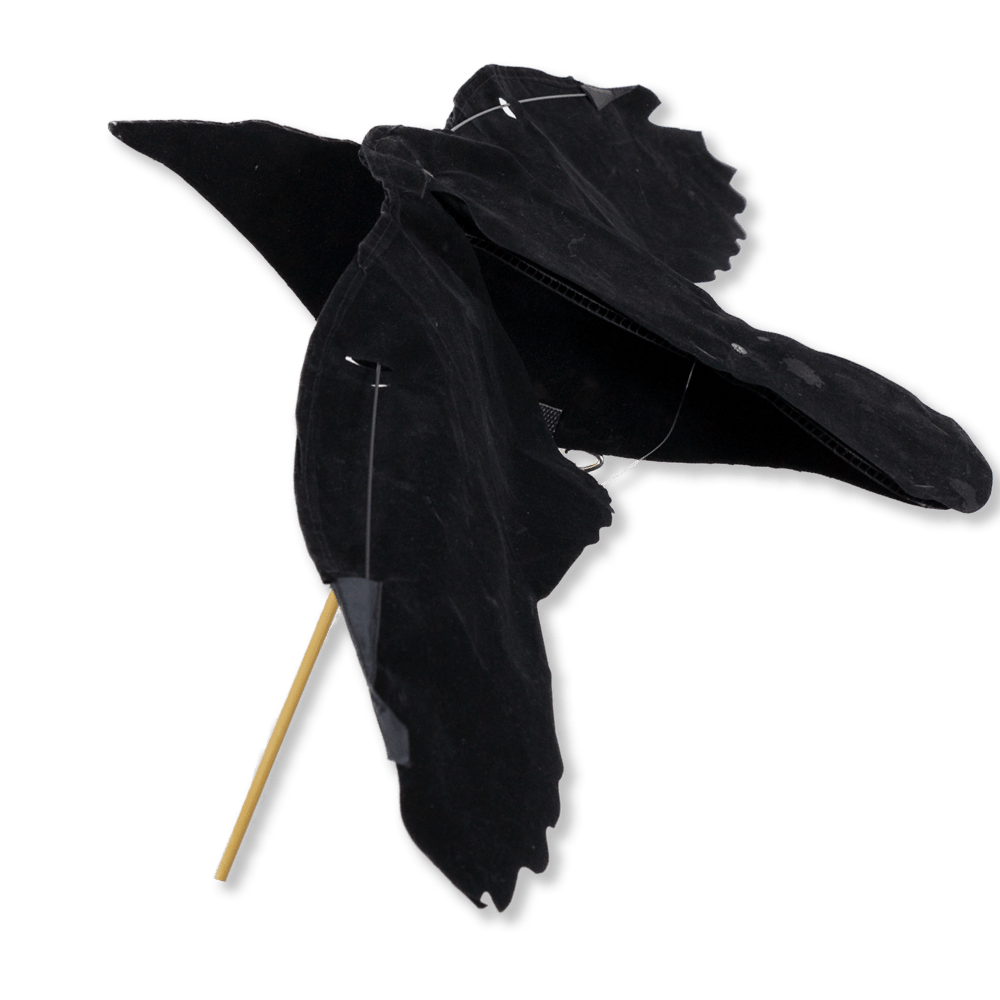 Image of the Sillosocks Crow Flapper