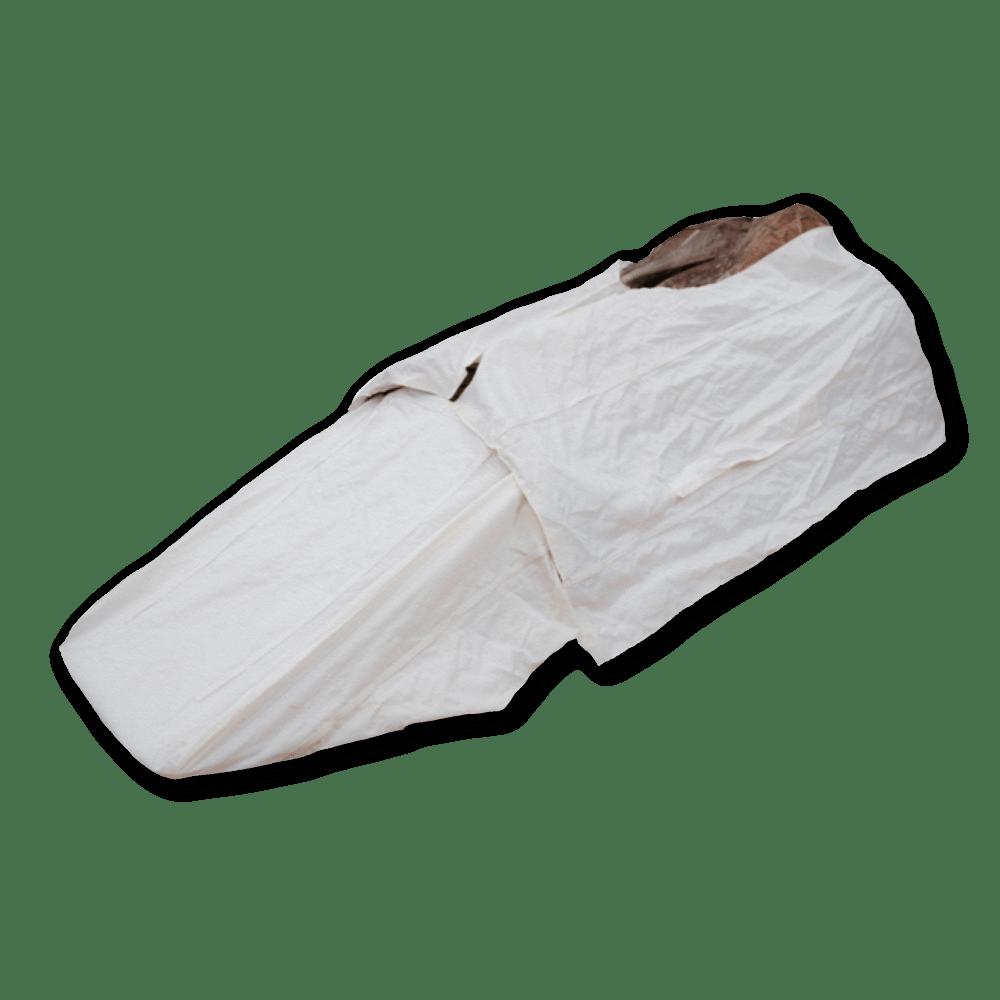 Image of Beavertail Big Gunner Snow Cover
