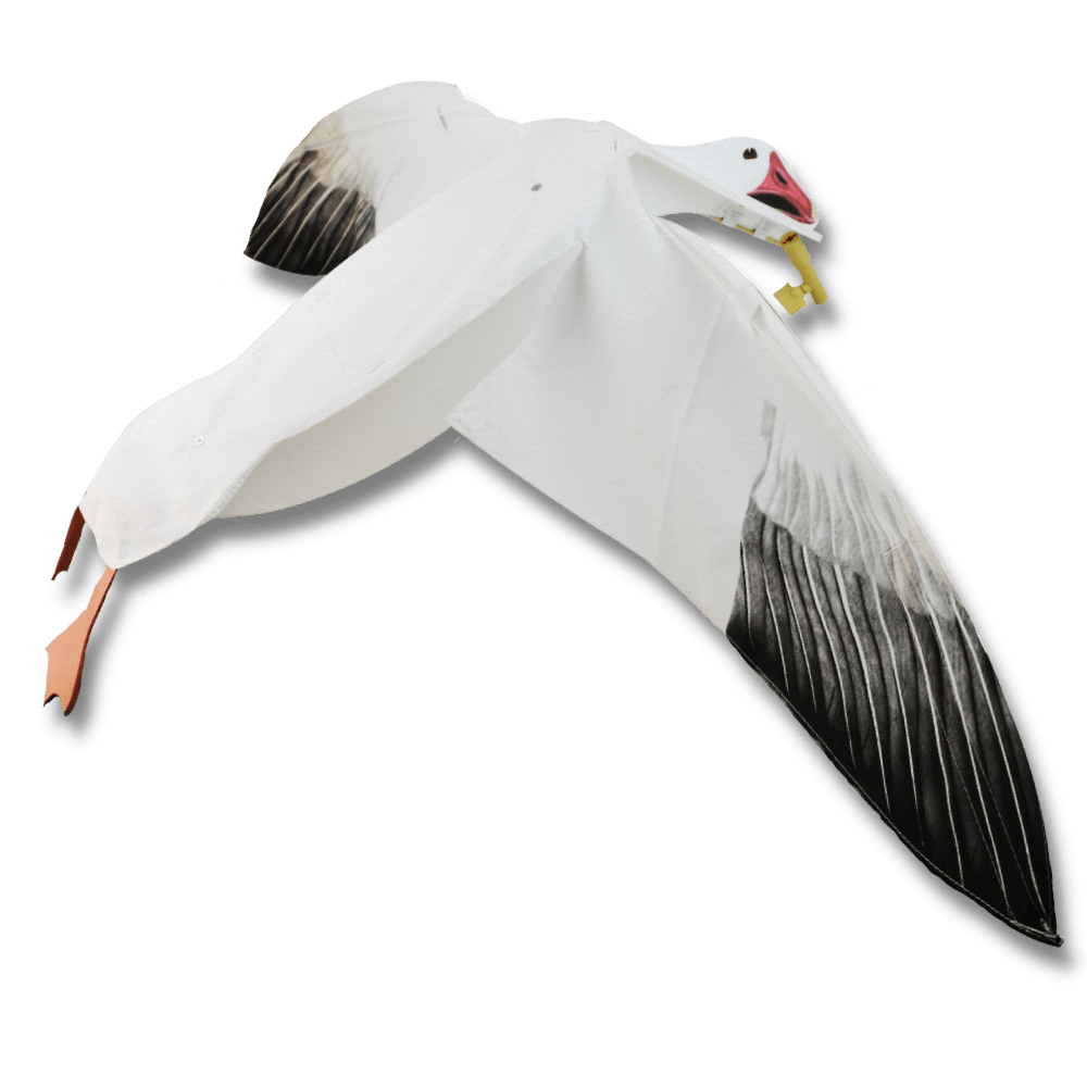Image of the Sillosocks Snow Goose Flapper