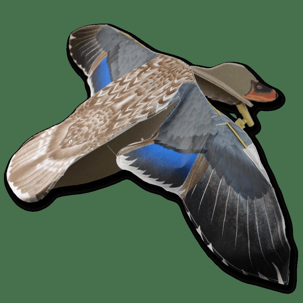 Image of the Sillosocks Hen Flapper