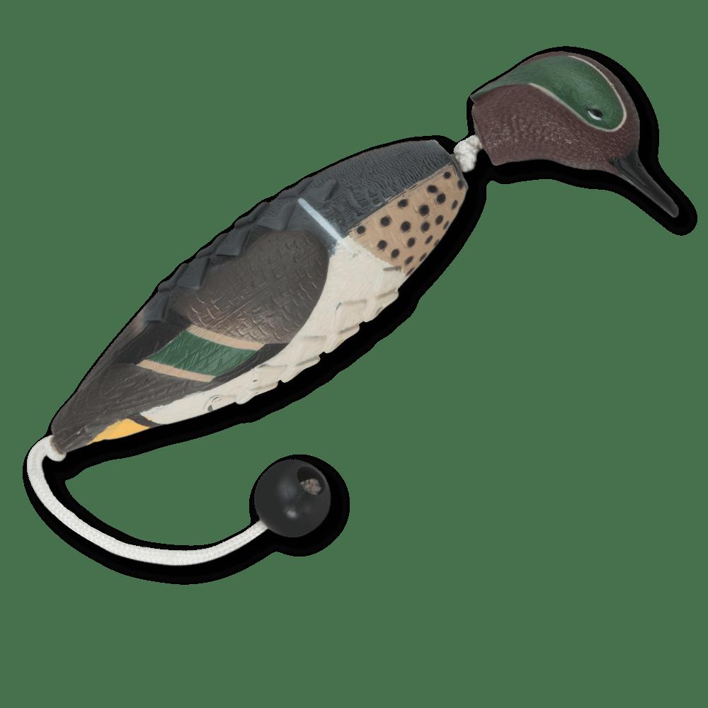 Image of the ASD Teal EZ Bird