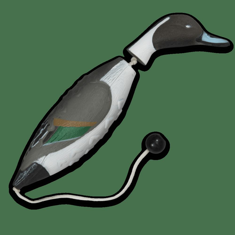 Image of the ASD Pintail EZ Bird Training Dummy