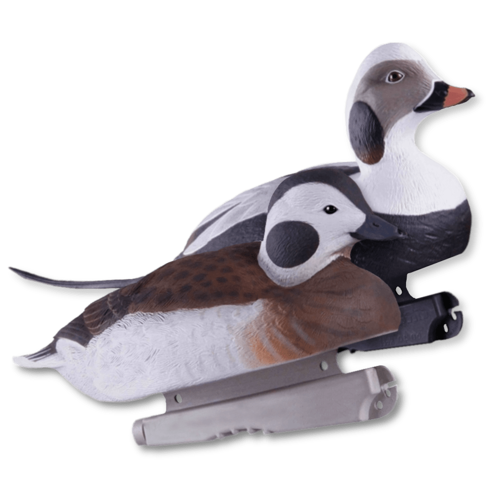 Image of the GHG Long-Tailed Duck foam filled decoys