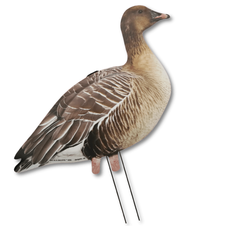 Image of Big Al's Silhouette Pinkfoot Decoys