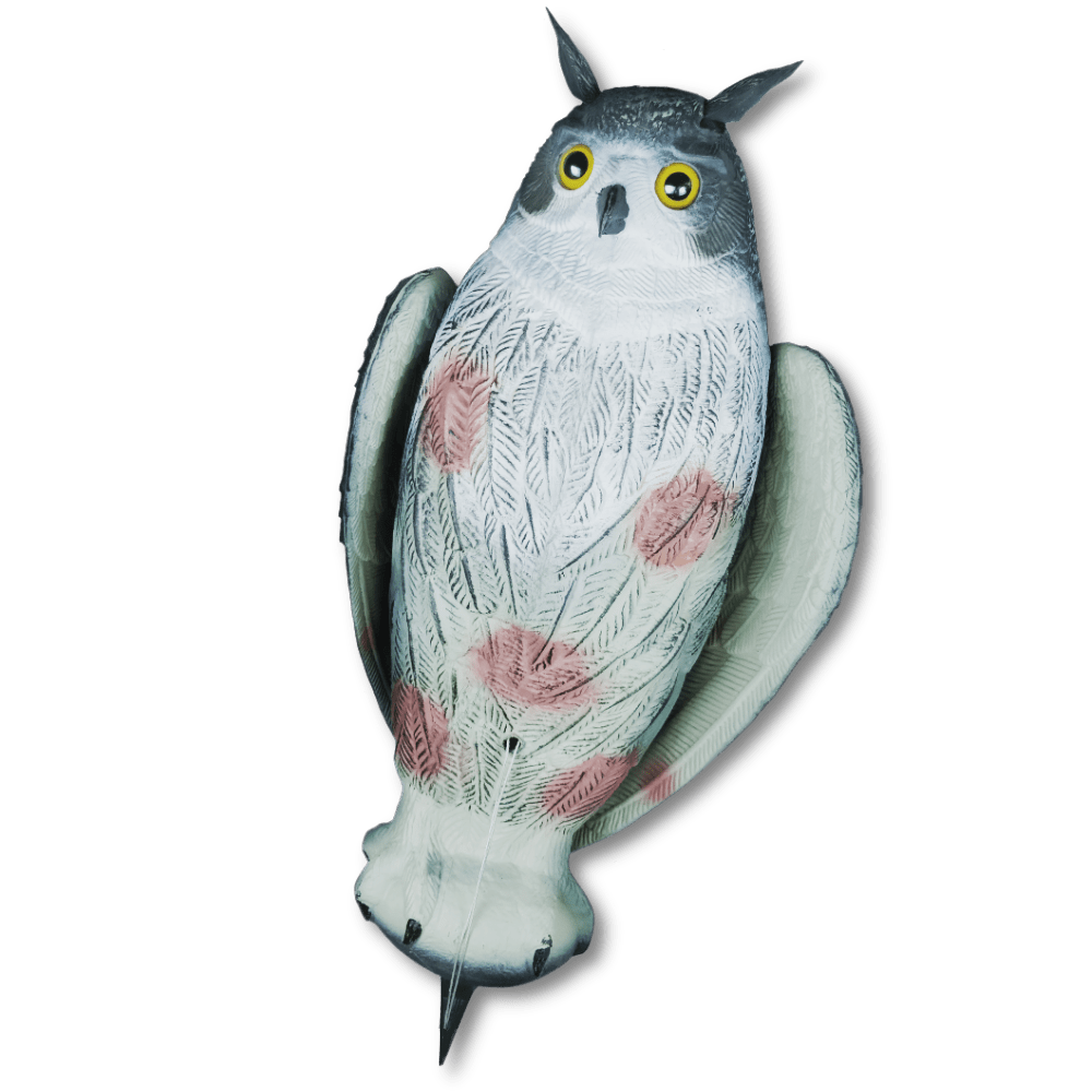 Image of the decoy owl