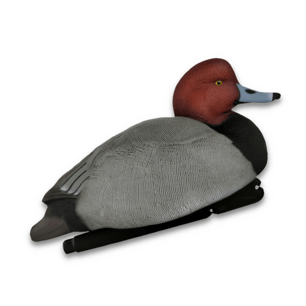 Image of the Avian-X Topflight Redhead Duck Decoys
