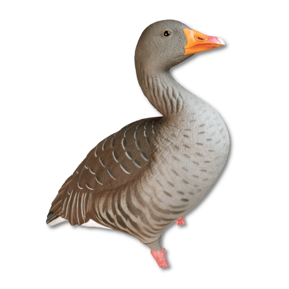 Image of the GHG Greylag Decoys